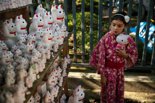 Holding a Hello Kitty doll, 8-year-old Grace Fetherston, of Australia, looks at beckoning lucky cat figurines at Gotokuji Temple in Tokyo, June 25, 2019. (AP Photo/Jae C. Hong)