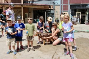 Photos: Mountain Top Children's Museum dog washing day