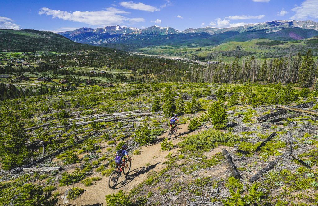 Mountain bikers ride past deadfall at timberline during the fourth stage of this year's six-day Breck Epic mountain bike race, the 41-mile Aqueduct, the Tenmile Range in view in the background.