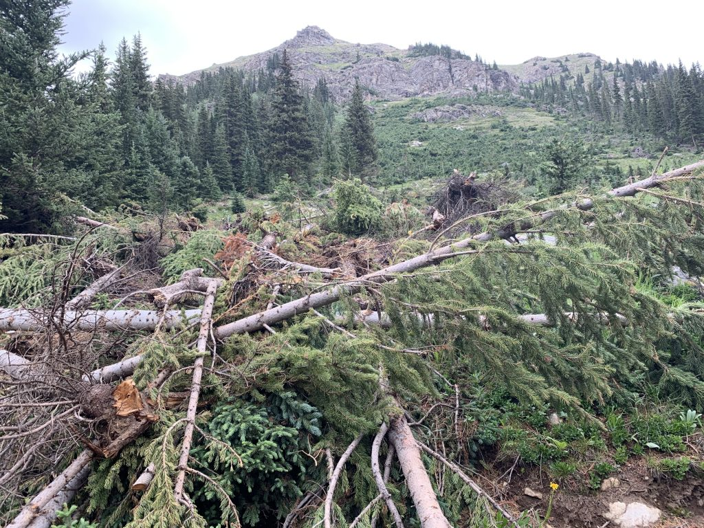Avalanche debris along the Saints John Jeep Road route as seen on Aug. 10.