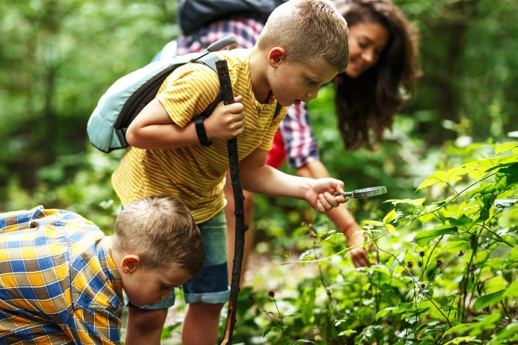 Hiking with kids: Tips and tricks to make hiking fun for the whole family